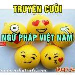 Ngữ pháp Việt Nam