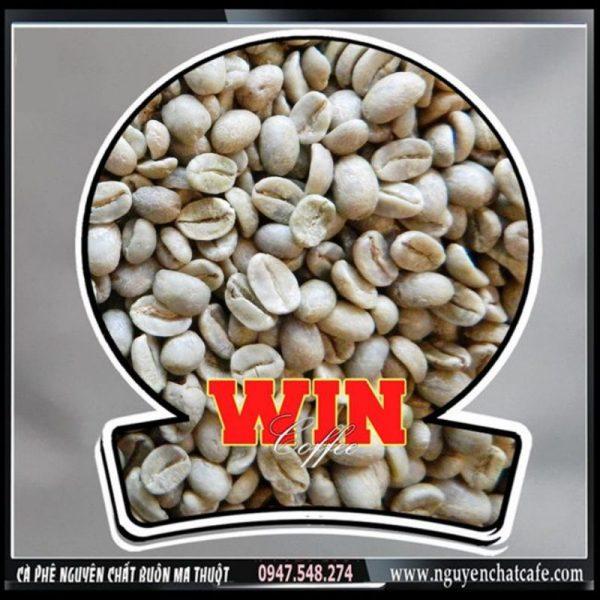 Cà phê hạt Môka Cầu Đất Lâm Đồng